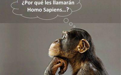 Homo Sapiens ¿De verdad merecemos este título …?